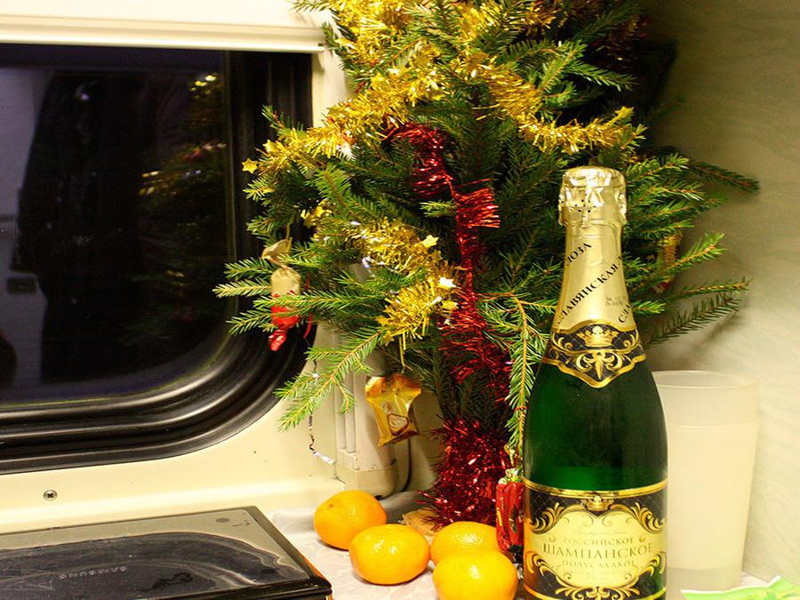 Новогодним поездом в Поместье Деда Мороза