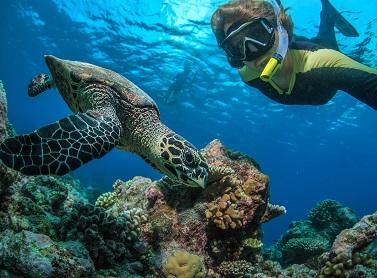 Мальдивы - безопасное место для отдыха