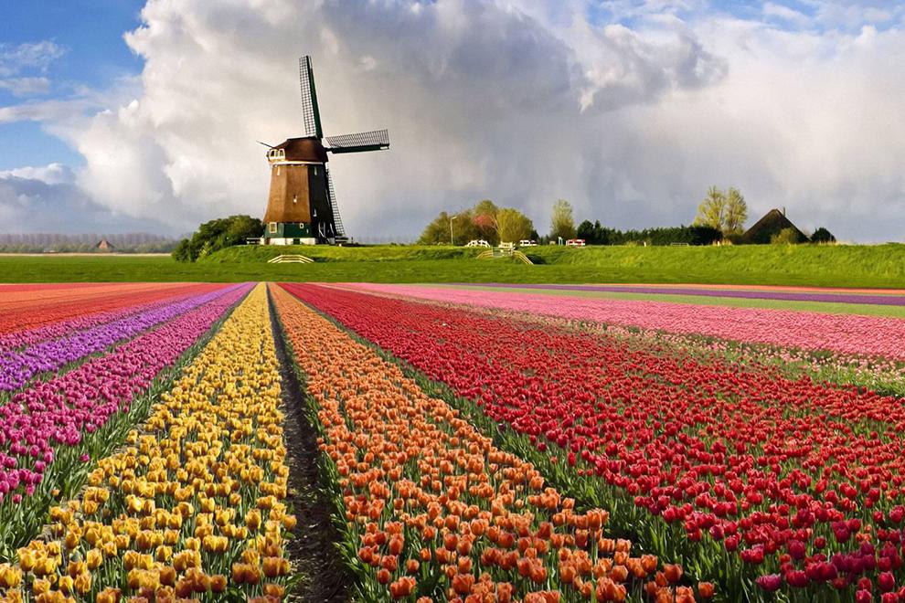 Корона Бенилюкса + красоты Голландии