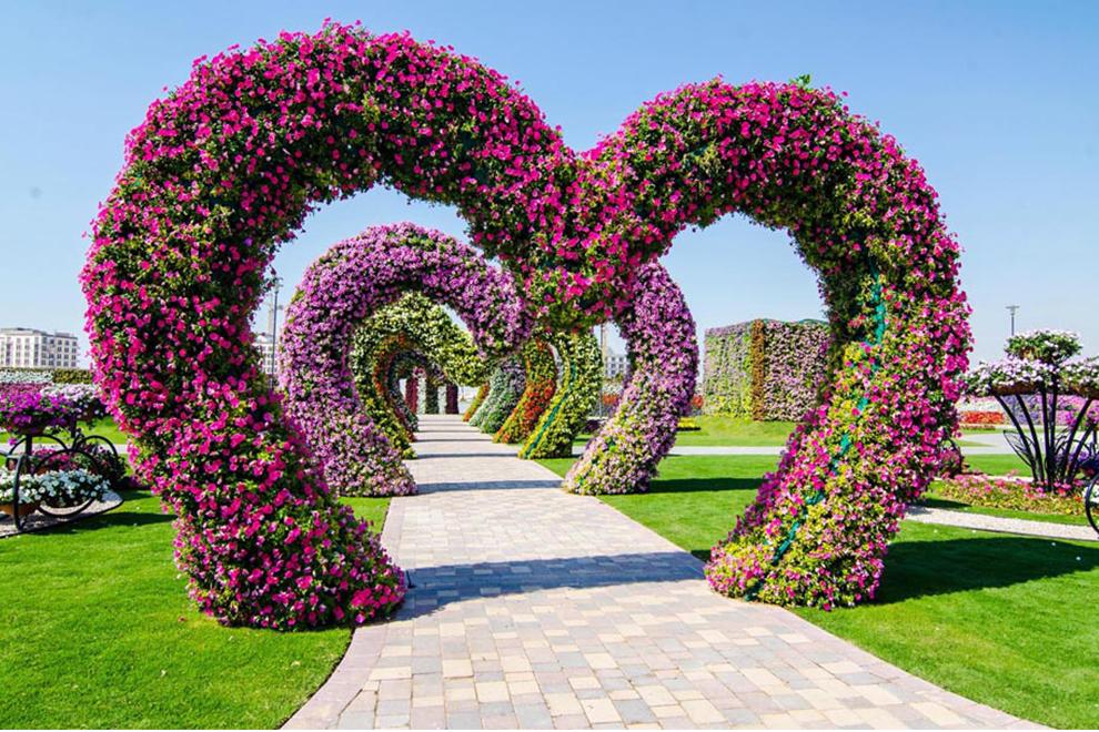 «Чудо Сад» в Дубай — самый большой цветочный сад мира