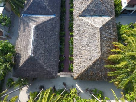 Plumeria Maldives Guest House