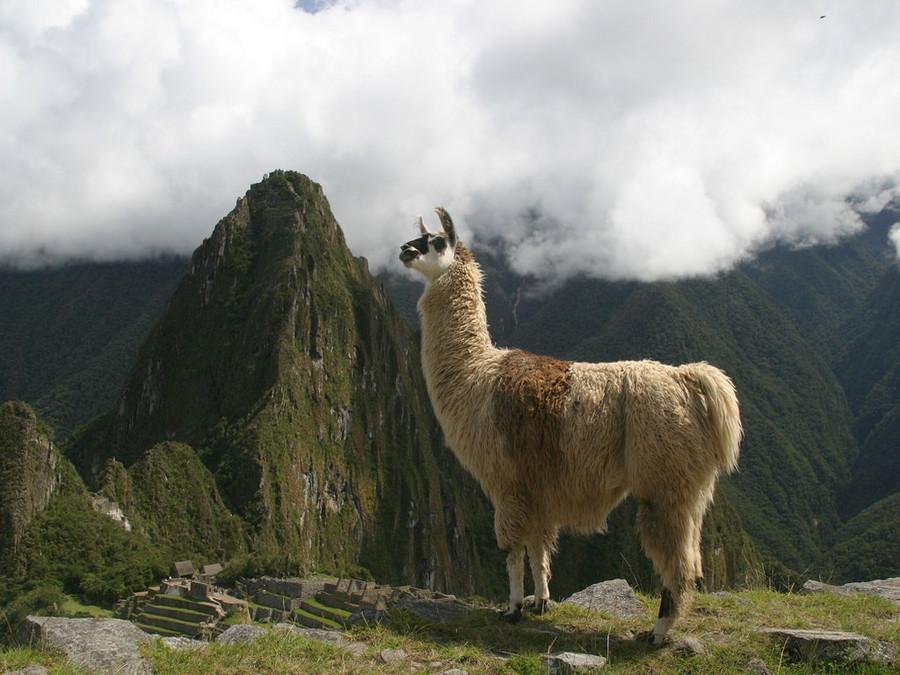 Манящий Перу (эконом программа)